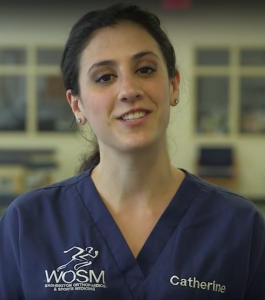 Dr. Wolff's Medical Assistant